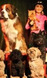 Kathlens Hundeshow bei Showdreams.de